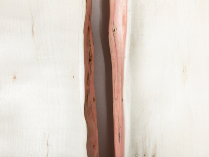 "Julian Watts ""Live Edge II"" , image 5"